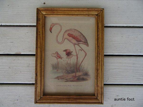 画像1: オールドルックフレームポスター・フラミンゴ W245×H345×D15